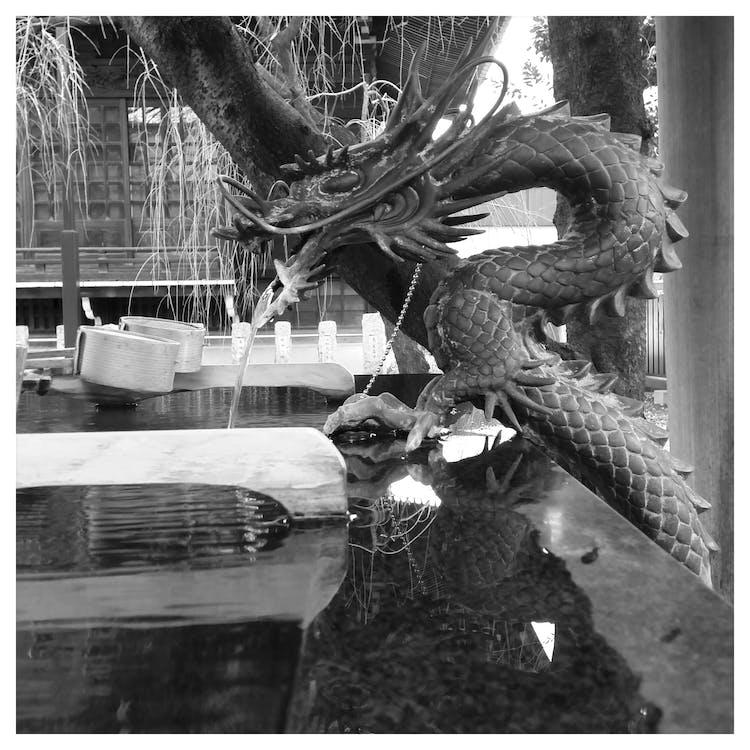 Free stock photo of dragon, japan, temple