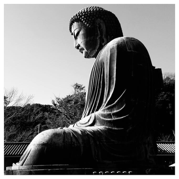 Free stock photo of buddha, great, japan