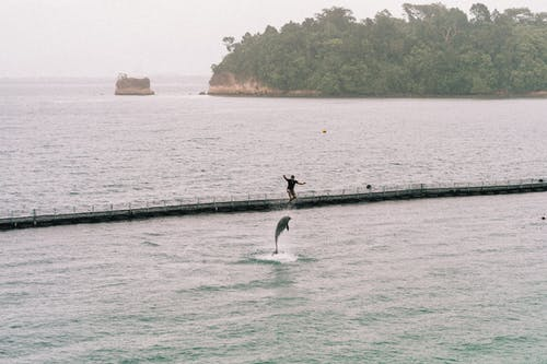 Person Surfing on Sea