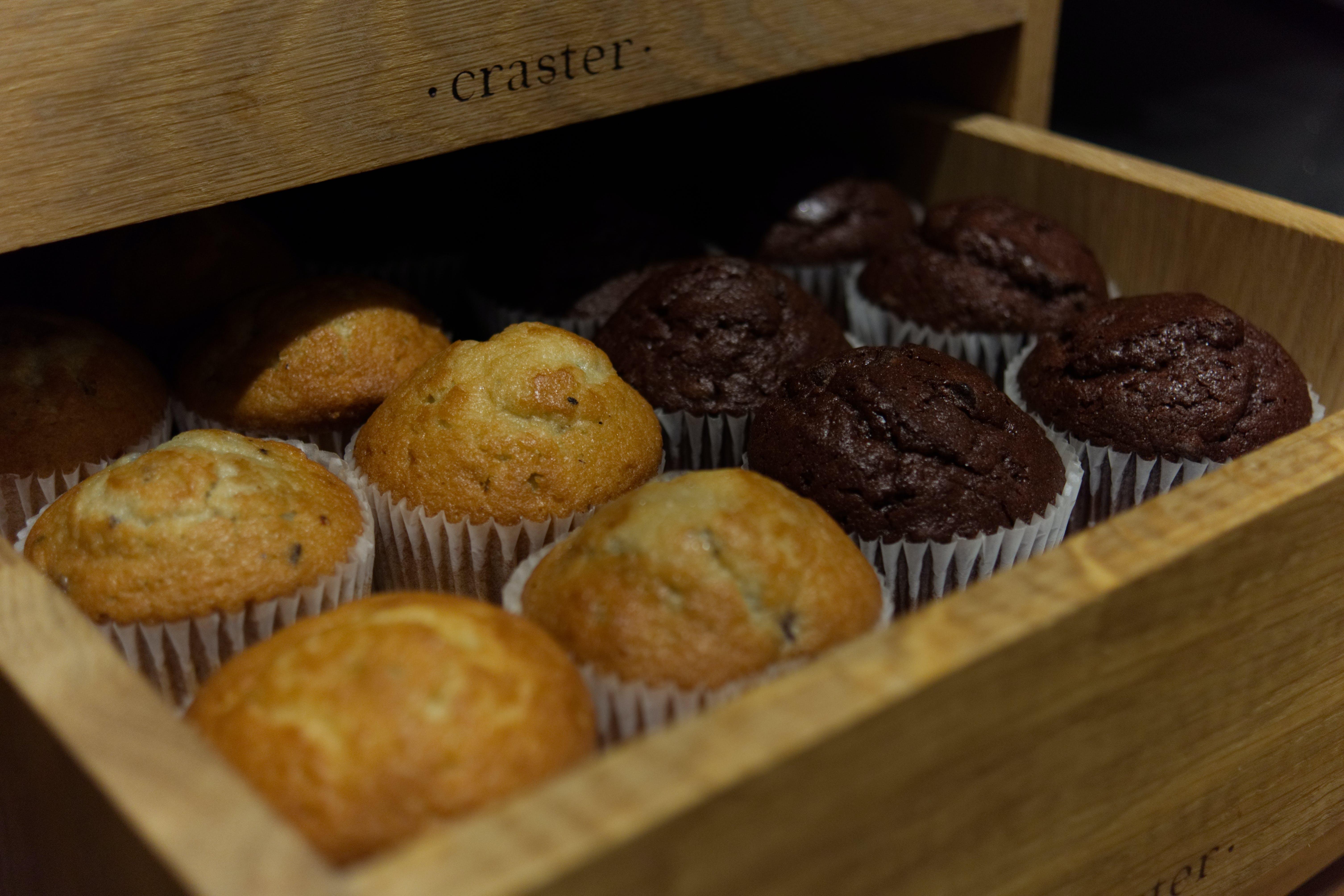 Free stock photo of 4k, blueberry muffins, breakfast, chocolate muffin