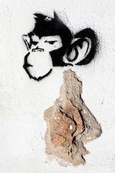 Free stock photo of monkey, theme street-art, stencil