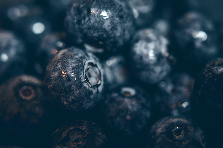 antioxidans, beeren, blaubeere