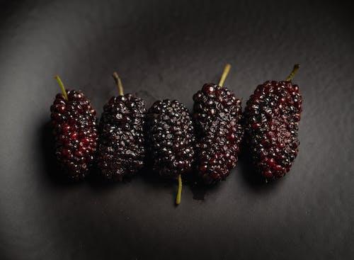 Free stock photo of berries, black, bramble