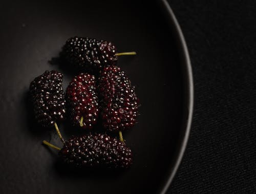 Free stock photo of berries, black, fruit
