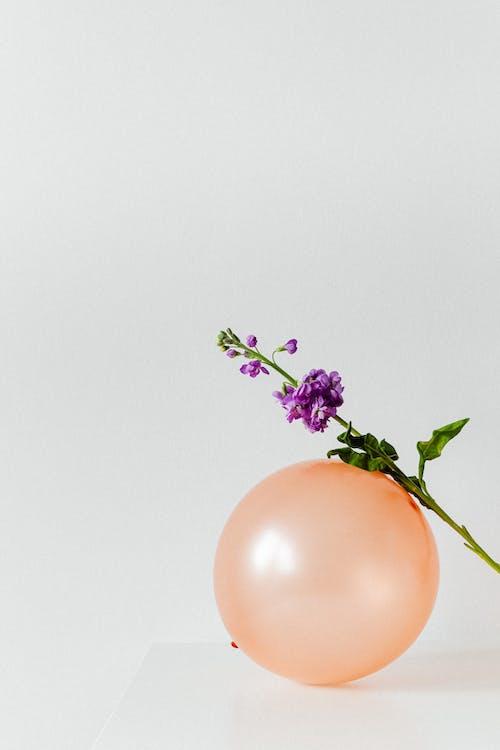 Purple Flower on Orange Balloon