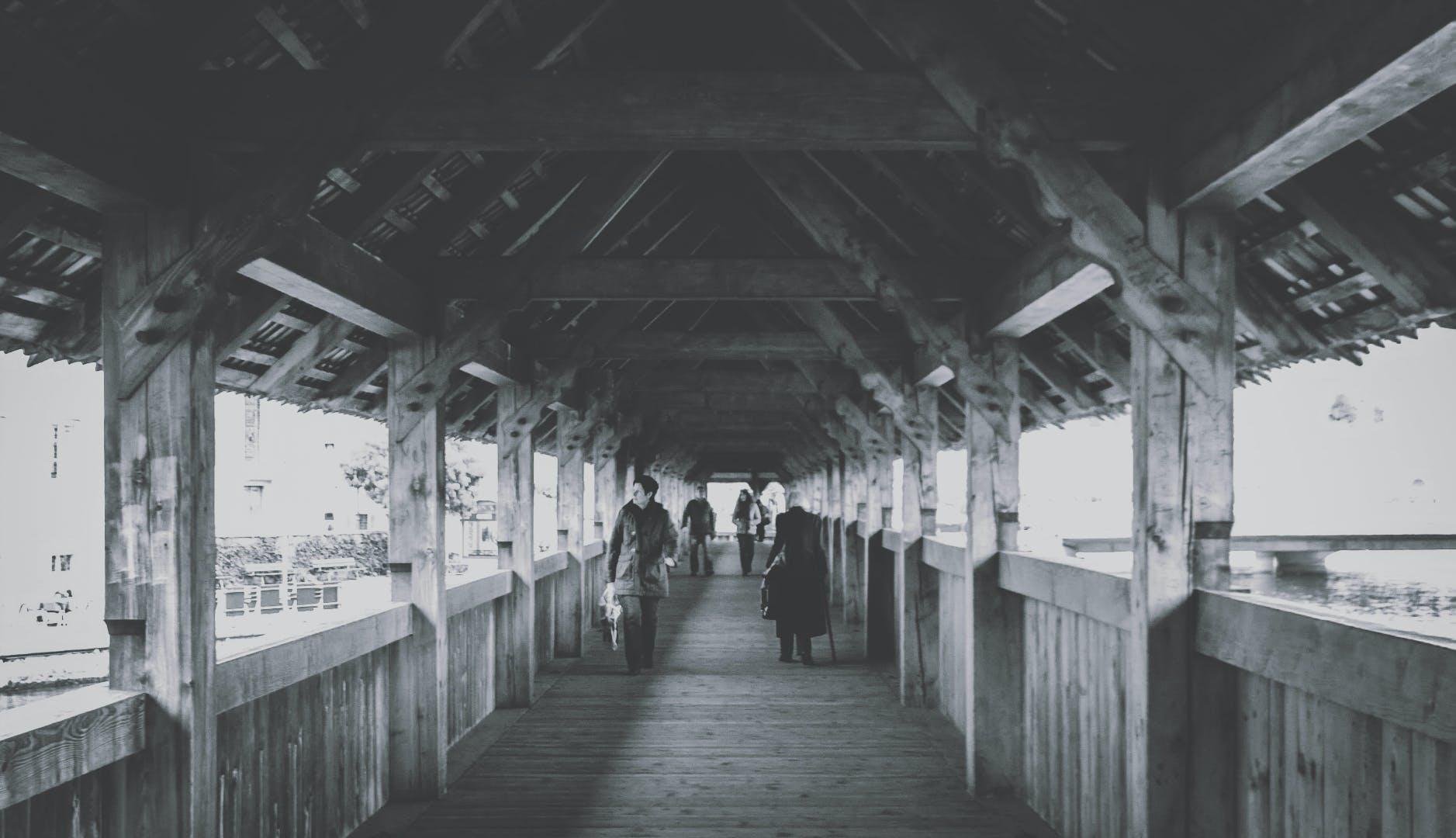 Free stock photo of black and white, bridge, wooden bridge