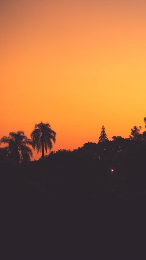 atardecer, gün ışığı, Güneş ışığı içeren Ücretsiz stok fotoğraf