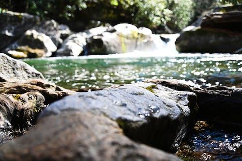 Gratis stockfoto met h2o, steen, water