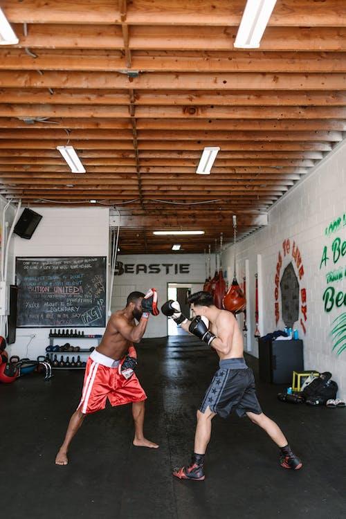 Foto profissional grátis de academia de ginástica, ação, atividade