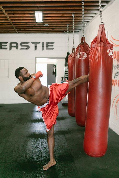 Бесплатное стоковое фото с Активный, афро-американец, боксерская груша