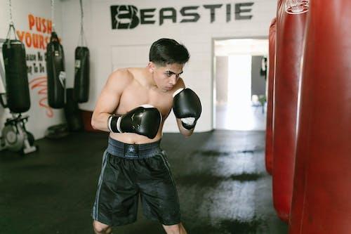 Imagine de stoc gratuită din activitate, atlet, box
