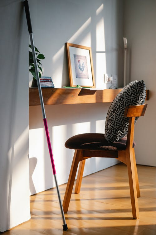 Photo of Walking Stick Leaning on the Wall