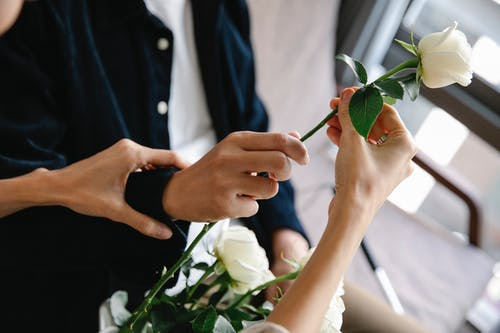 Photo Of People Holding A White Flower