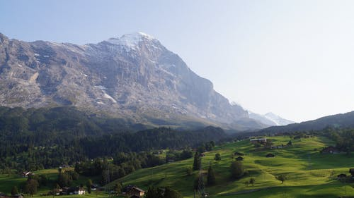 Free stock photo of Aps, grass, grindelwald