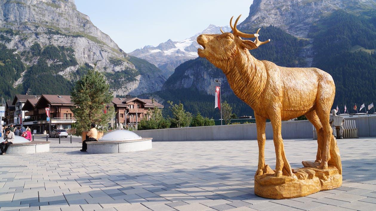 Free stock photo of deer, figure, gold