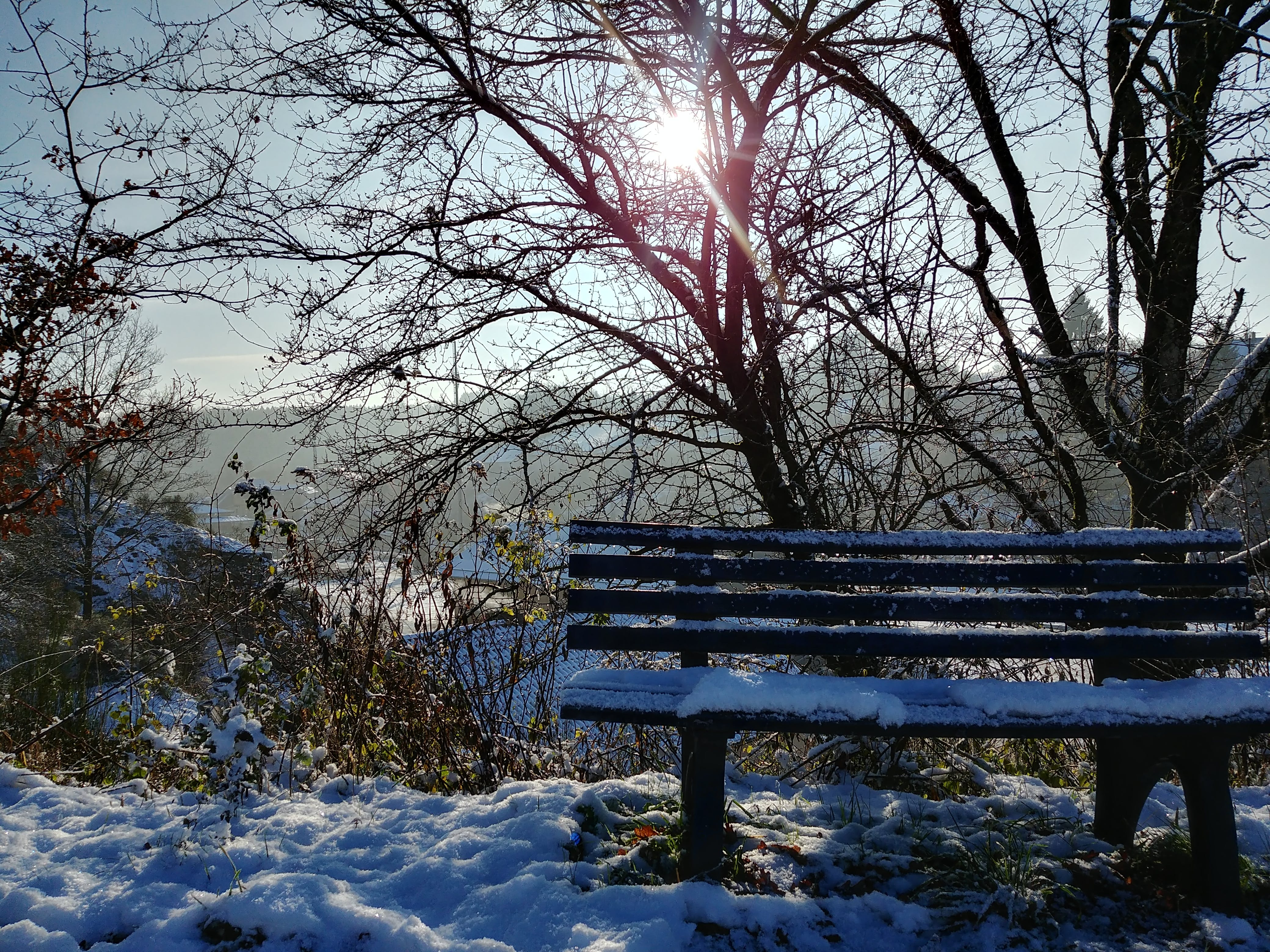 Free stock photo of bench, Luxemburg, mountain, scenery
