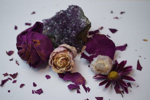 Dried flowers with petal pieces and crystals