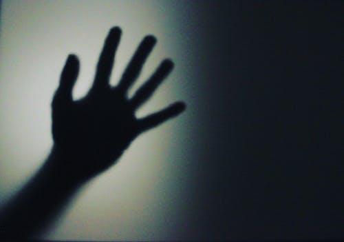 Foto d'estoc gratuïta de clareja, desenfocament, fosc, lleuger