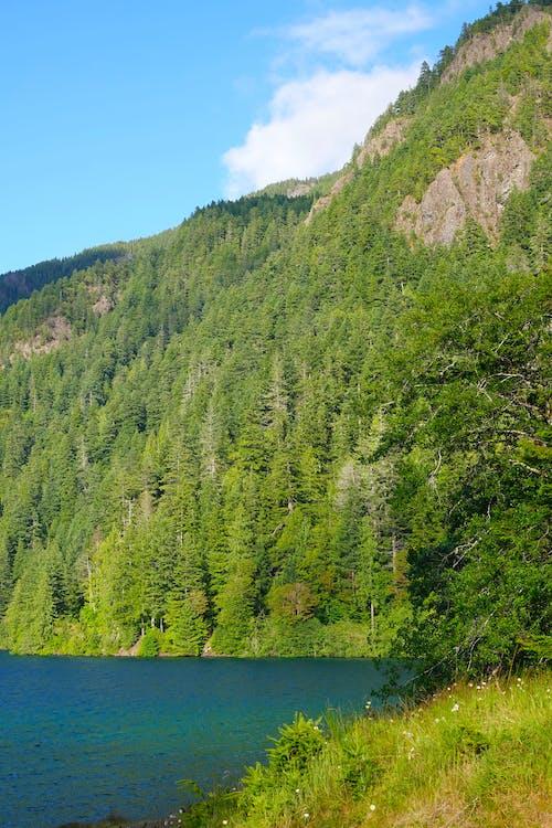 Free stock photo of blue lake
