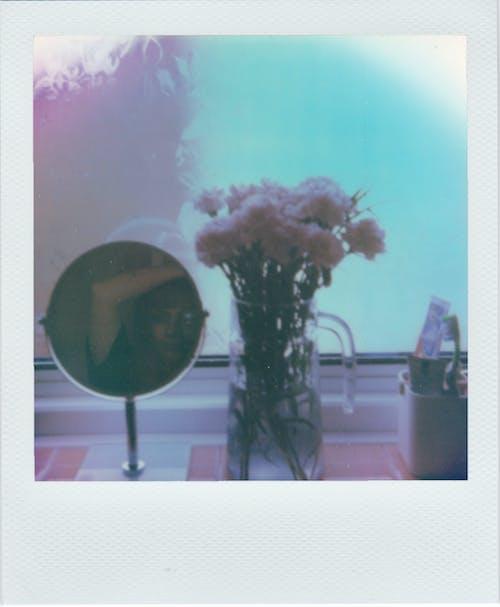 White and Black Flower in Vase