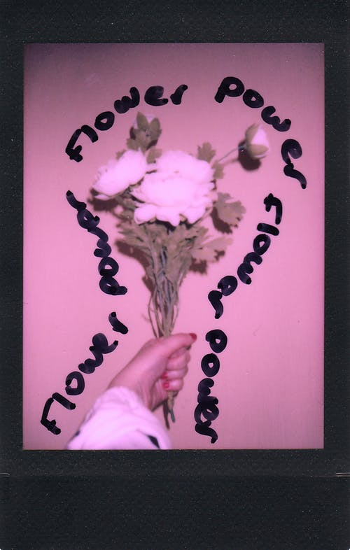 Person Holding Purple Flower Wall Decor