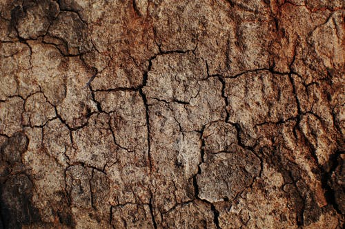 Full frame textured background of drought brown uneven surface with cracks in desert