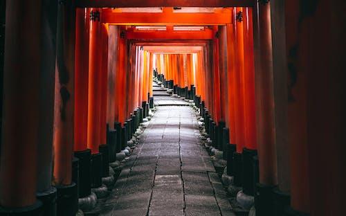 açık hava, dış mekan, fushimi içeren Ücretsiz stok fotoğraf