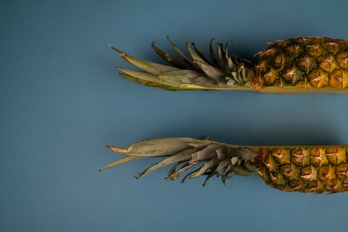 Backdrop of fresh cut pineapple with wavy leaves