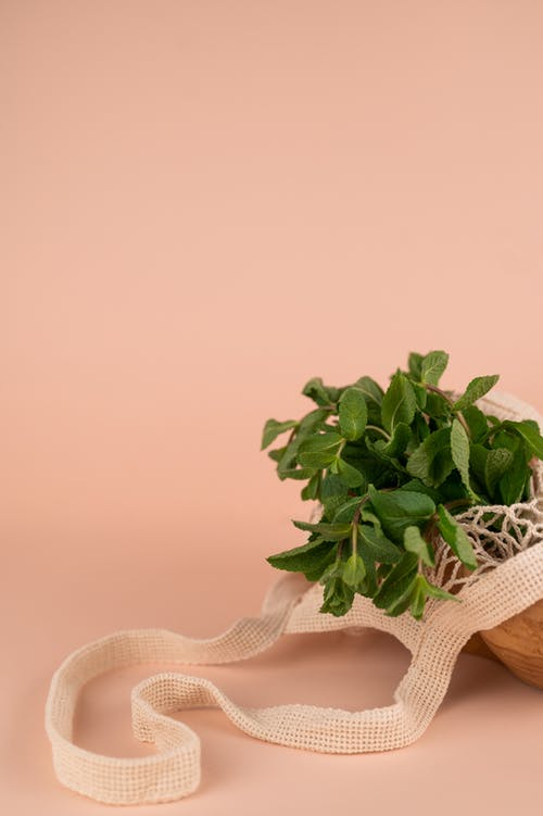 Fragrant fresh mint leaves on wavy stalks in natural bag on smooth pastel background