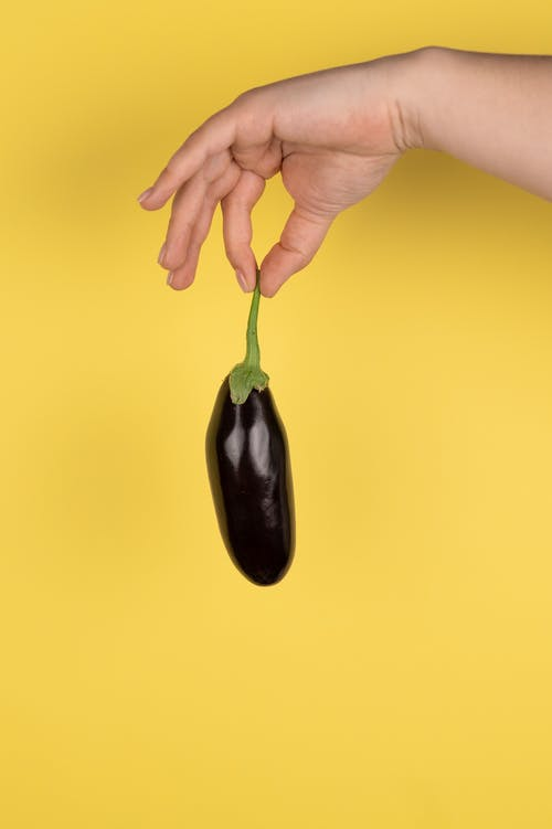 Crop anonymous person holding ripe dark organic aubergine by stem on yellow background
