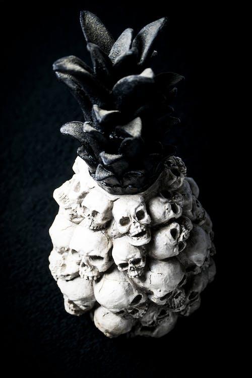 Fotos de stock gratuitas de calavera, cráneo, en negro