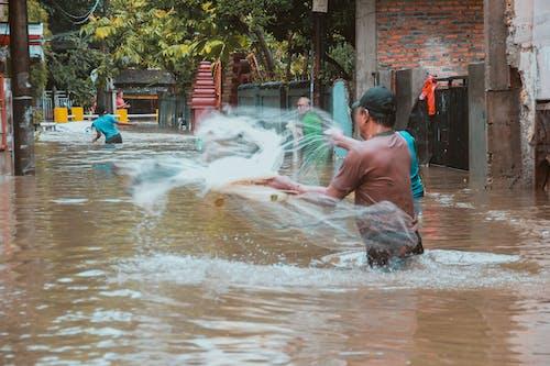 Fotos de stock gratuitas de agua, al aire libre, barca