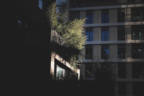 Modern buildings on sunny street