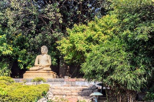 Gautama Buddha Statue in Japan