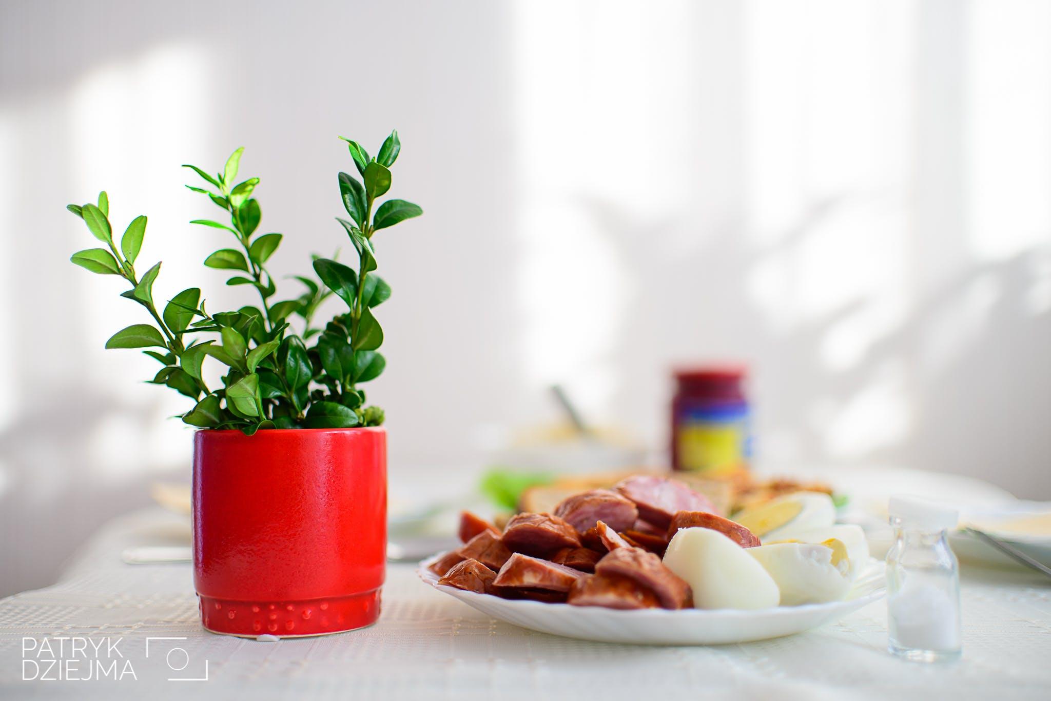Free stock photo of breakfast, easter, eggs, flower