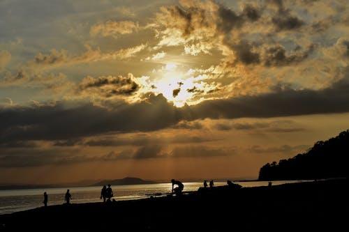 Free stock photo of beach, evening sun, nature photography, ray of sunshine