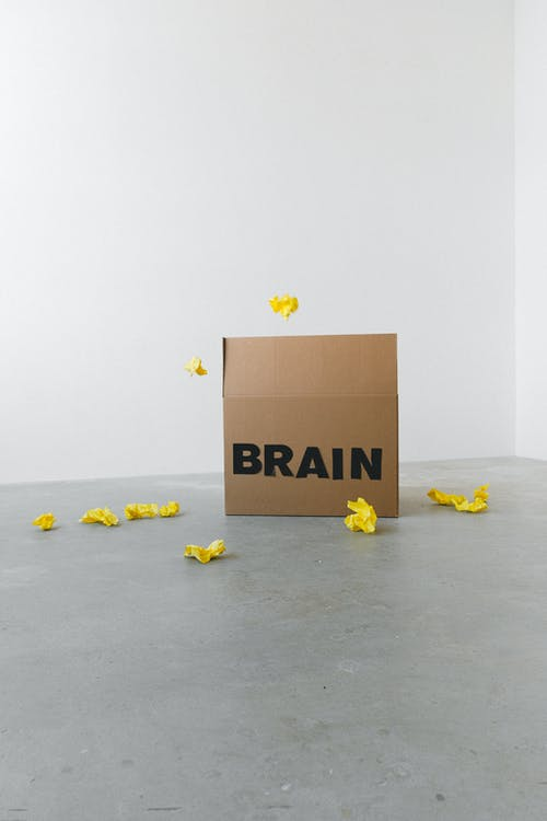 Brain inscription on cardboard container under flying paper pieces representing trash attracted by mind on white background
