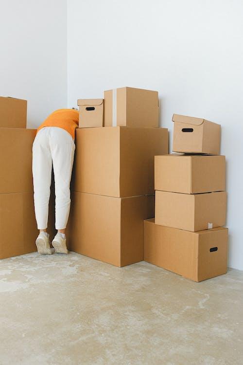 Free stock photo of box, cardboard, carton