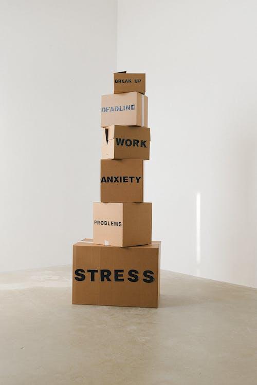Free stock photo of box, bundle, business