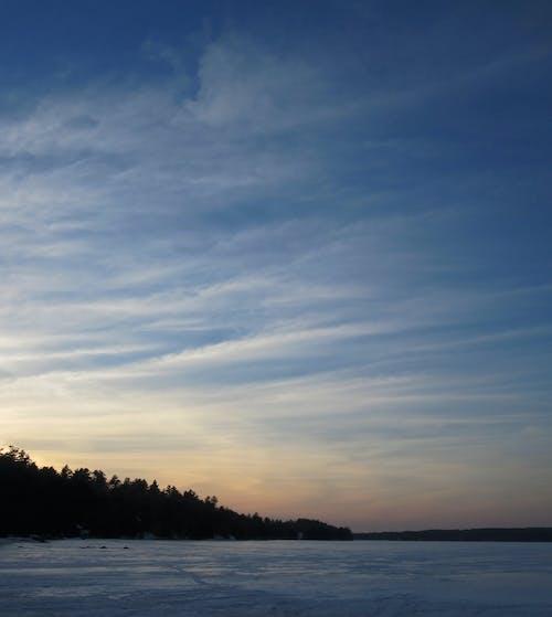 Immagine gratuita di alberi, cielo, ghiaccio, inverno