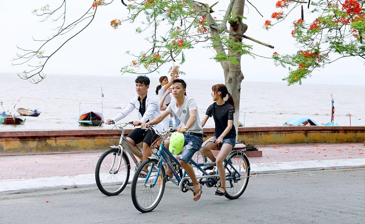 akcia, aktívny, bicykle