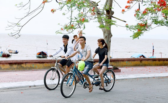 Two Boys and One Girl Riding Bicycles on Road Beside Body of Water