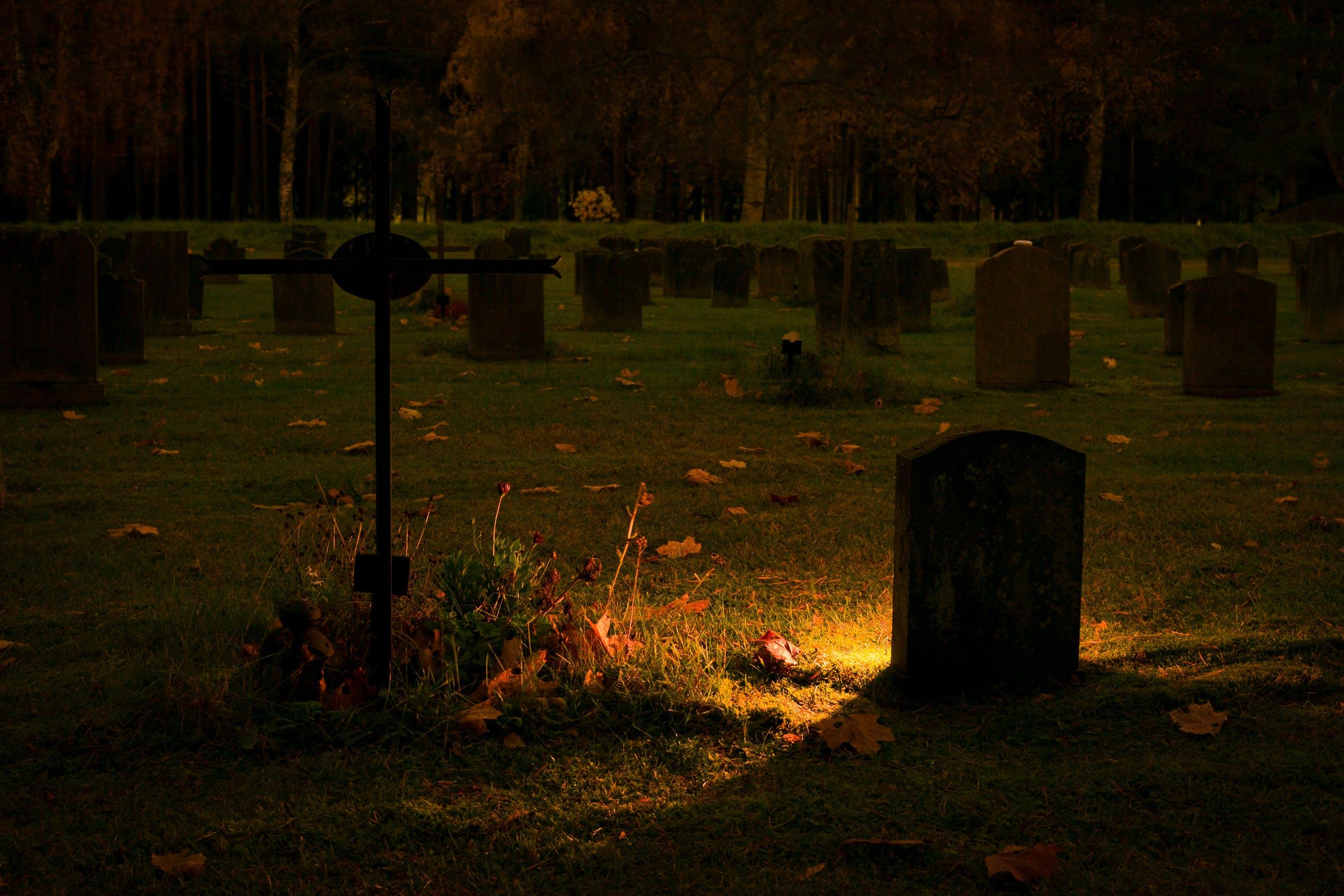 Gratis lagerfoto af aften, bagbelyst, begravelse, grav