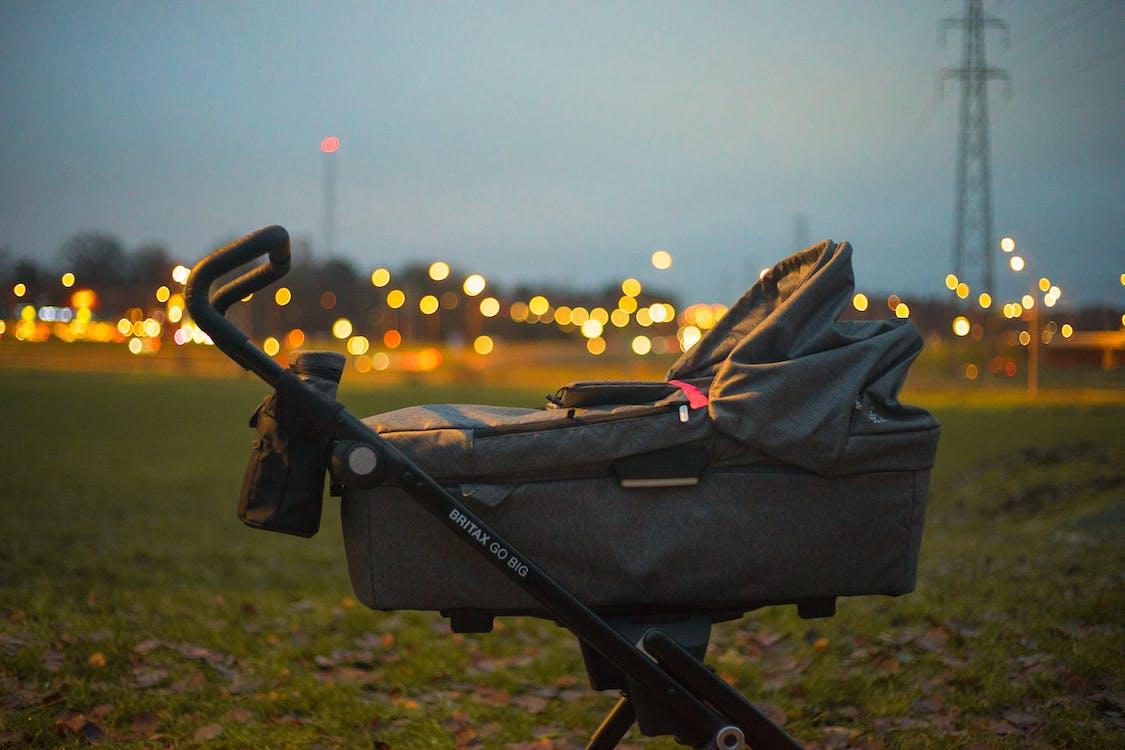 Babywieg Op Groen Gras