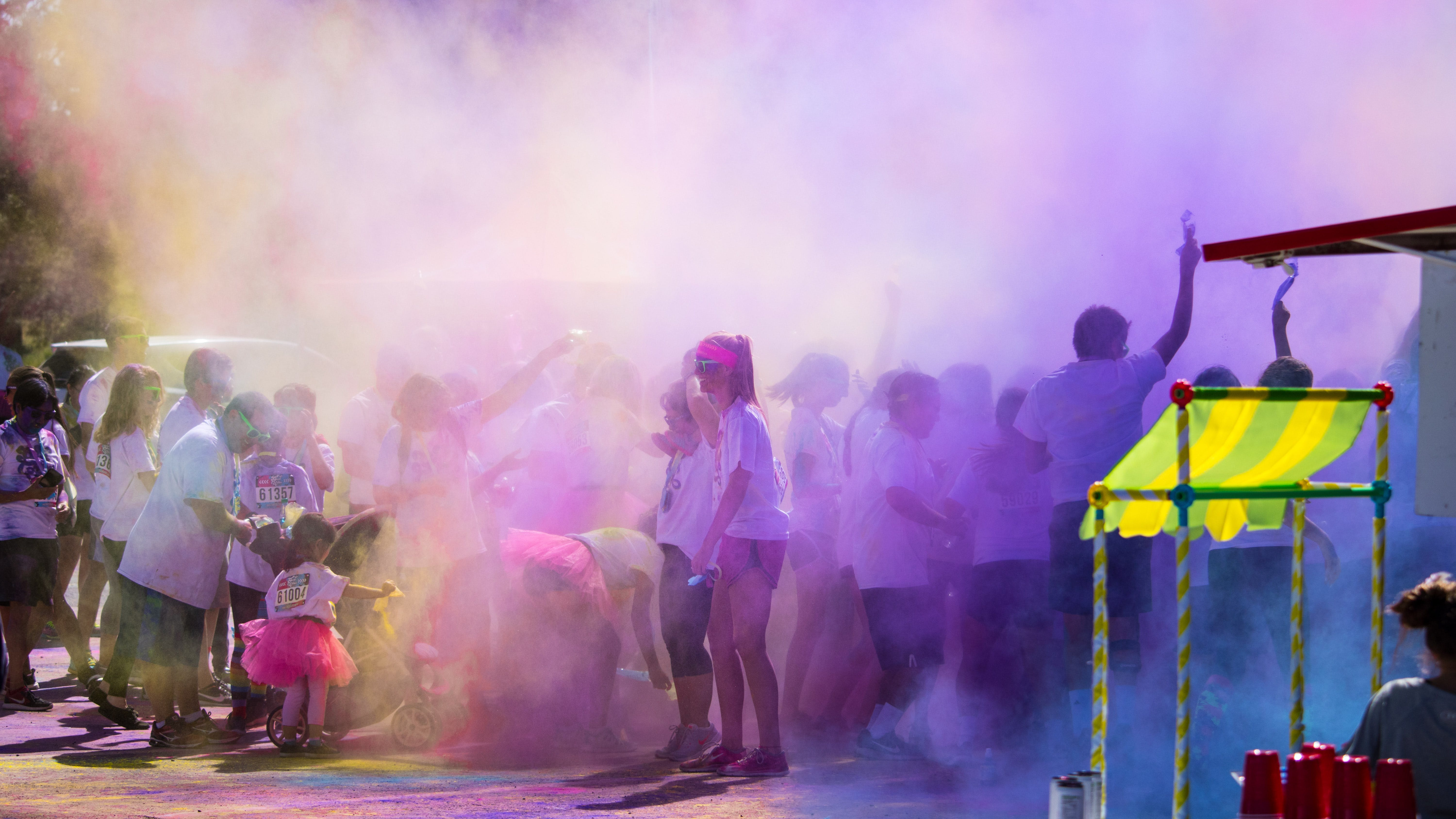 Group of People Color Powder Festival