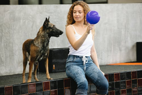 Woman with ball taming dog on poolside