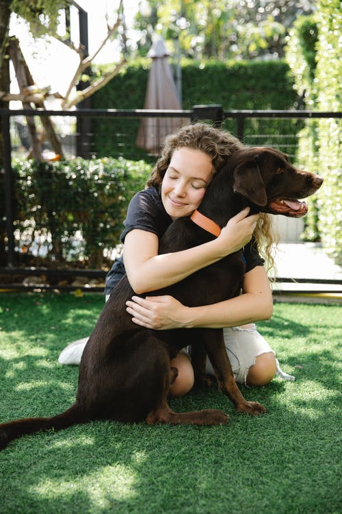 Woman embracing hunting dog on lawn in patio