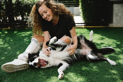 Cheerful adult female embracing and caressing fluffy purebred dog with open mouth while resting on meadow