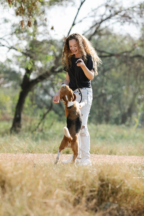 Young woman playing with dog in nature