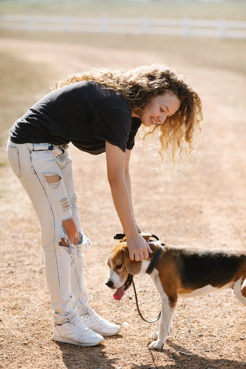 Side view of optimistic young female with curly hair caressing cute beagle dog with tongue out while standing on countryside road in summer